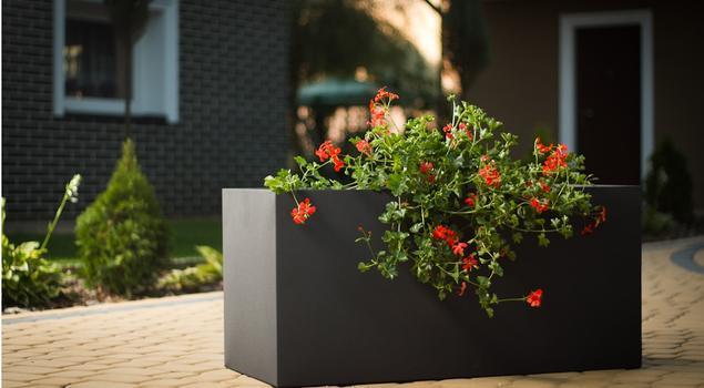 Donice ozdobne – najważniejszy akcent pięknych aranżacji